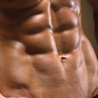 The Hollywood Abs Training System