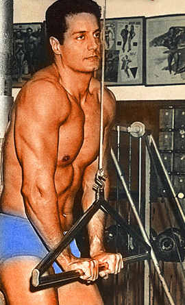 Vince gironda bodybuilding muscle fitness trainer wild physique vince gironda bodybuilding muscle fitness trainer wild physique iron guru page 120 malvernweather Image collections